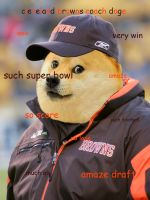 cleveland browns coach doge by unoservix