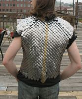 scale mail vest back by DracoLoricatus