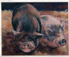 Our Pot bellied Pigs by Wulff-Arts