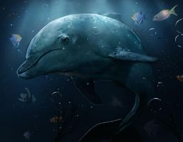 Dolphin sketch (live now) by Mrahart