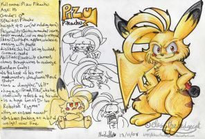 Pizu Profile 2008 by mmishee