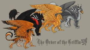 The Order of the Griffin by Jenosavel
