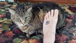 Tattoo 1 with Scamper by GloomieDeath666