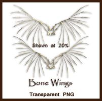 Bone Wings by shd-stock