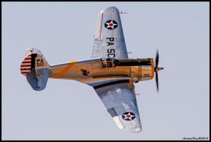 Curtiss P-36 Hawk by AirshowDave