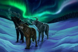 Under the northern lights by wolf-minori