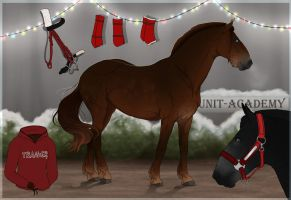 Traaker Import |Christmas GIFT 113 by BRls-love-is-MY-Live