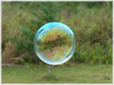 Bubble World by kat1967