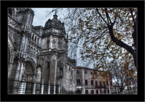 Catedral de Toledo by Morillas