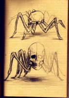 Arachno Skull by hellmancrow