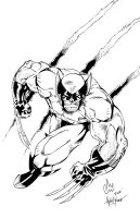 Wolverine by Slateman inks by AlonsoEspinoza
