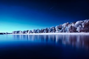 Infrared reflections by Matthias-Haker