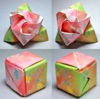 Origami Magic Rose Cube by SatKyoyama