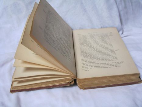 Open book stock 2 by rustymermaid-stock