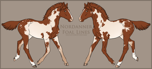 Nordanner Foal #2051 (Recycled ID) by soulswitch
