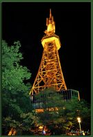 Terevi Tower at night by Alicewood