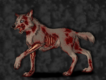 Zombie dog by UKthewhitewolf
