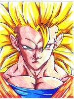 ssj 3 goku close up by trunks24