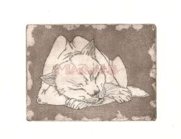 Gravure cat by MarianaDS
