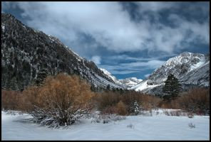 Yosemite NP 615101 by arches123