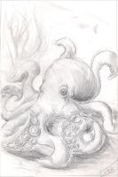Octopus by silent-h87