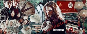 Everlasting Friendship Harry Potter Trio by VaL-DeViAnT