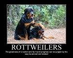 Rottweiler motivational by kitsune2008
