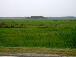 20030708 Marshfield Marshes by PetersonPhotos
