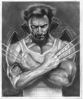 pencil wolverine complete by spdmngtruper