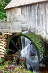 That Old Waterwheel by Daemare