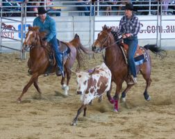 STOCK 2013 Rodeo-188 by fillyrox