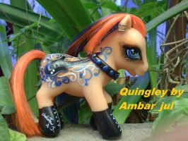 My little pony custom Quingley by AmbarJulieta