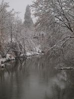 River in Winter 03 by botanystock