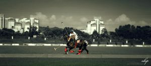 Polo by SKIN-3