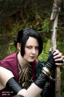 Morrigan 02 by static-sidhe