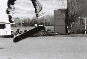 the way of sk8 by mrgambler