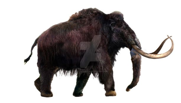 Woolly Mammoth - WIP part 5 by Dantheman9758