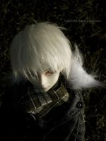 BJD: Wire to wire by Nashirah