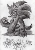 Sonic unleashed: Weresonic by mmishee
