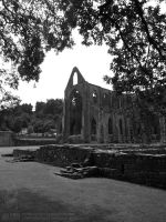 Tintern Abbey 02 by jollyjack