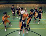 Haikyuu!!/HQ: Karasuno by prechu