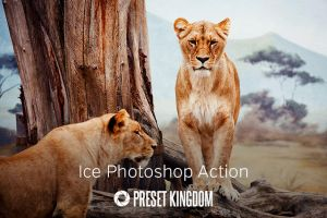 Free Ice Photoshop Action by presetkingdom