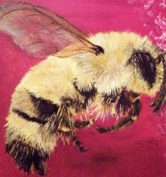 Bee Painting by BriarWitch