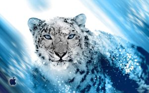 Snow Leopard Inspired by djog