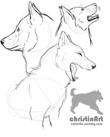 realistic dog practise by cricoina