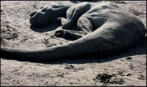 Sandy sculpture 6 by soheyl