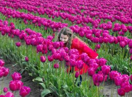 Babe Among The Tulips V by Photos-By-Michelle
