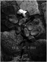 R.I.P. Rose in Peace by Kathaer