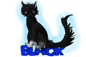 Black-kit by Tigerparadise