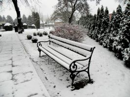 Snowy bench by Biljana1313